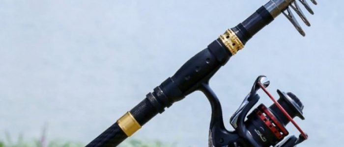 10 Best Fishing Rods 2021 – Do Not Buy Before Reading This!